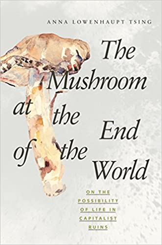 The Mushroom at the End of the World: On the Possibility of Life in Capitalist Ruins Cover