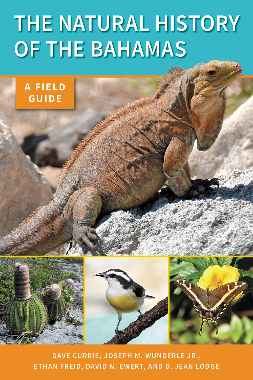 The Natural History of the Bahamas: A Field Guide Cover